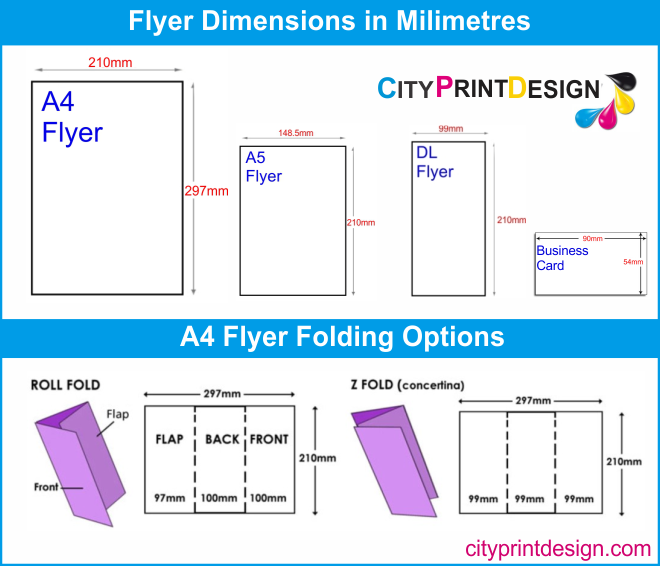 Flyer Dimensions Infographic
